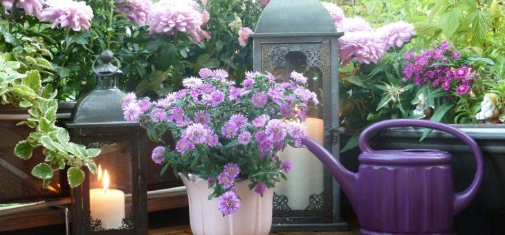 Proměňte svůj balkon v oázu klidu a svou osobní zahradu